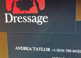 Andrea Taylor Branding including logo, business cards, and website.